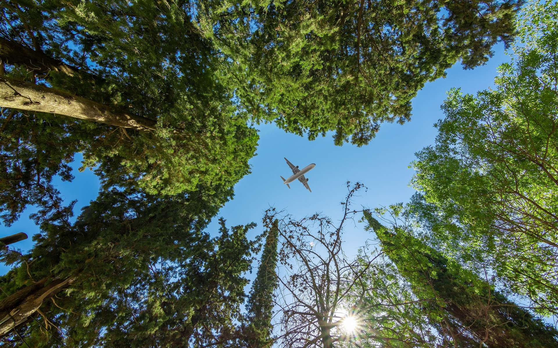 How will the aeronautics sector evolve in the face of the environmental challenges of tomorrow?